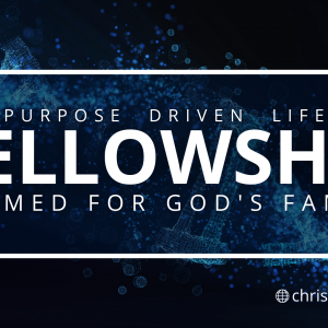 Purpose Driven Life: Fellowship