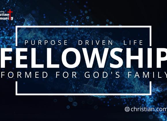 Purpose Driven Life: Fellowship