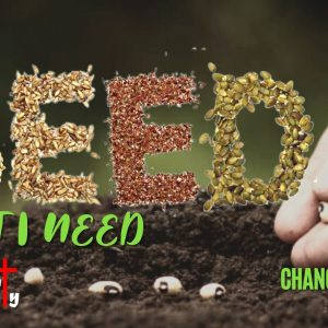 Change of Heart Part 2: Protecting the Seed that I Need