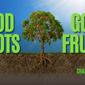 Change of Heart Part 3: Good Roots, Good Fruits